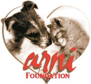 ARNI Foundation