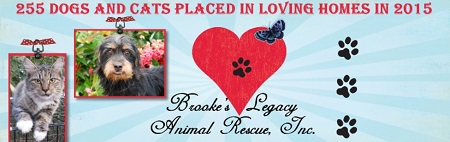 Brook's Legacy Animal Rescue